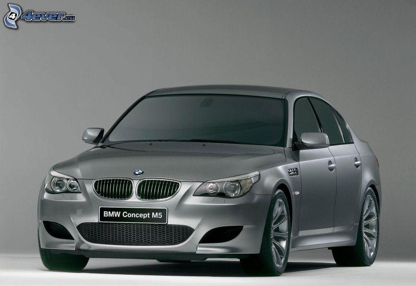BMW M5, concepto