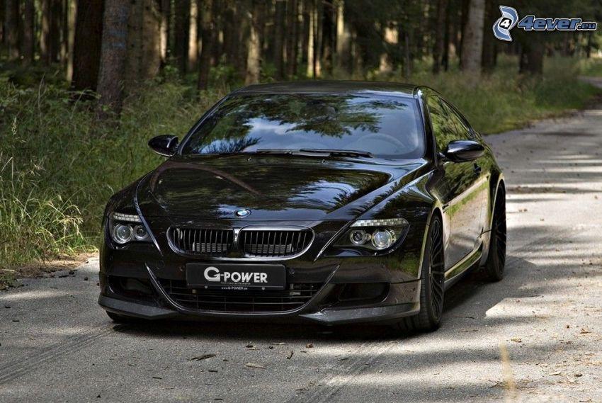 BMW M6, camino por el bosque