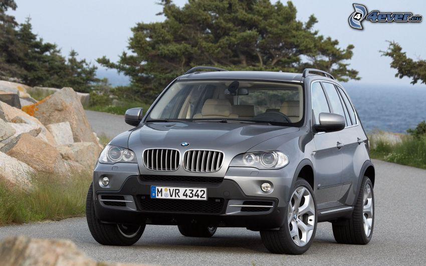 BMW X5, SUV, coche