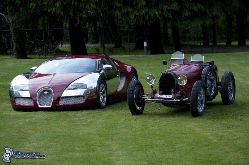 Bugatti Veyron, veterano, descapotable, césped