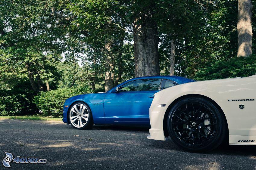 Chevrolet Camaro, rueda, disco, camino, árboles