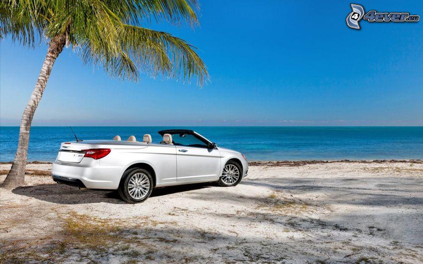 Chrysler 200 Convertible, descapotable, mar, palmera sobre el mar, playa