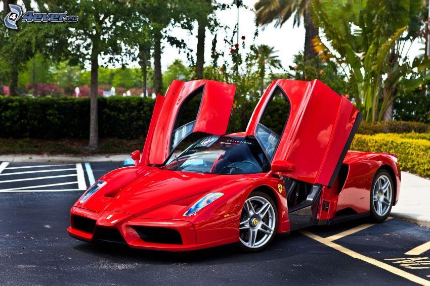 Ferrari Enzo, puerta