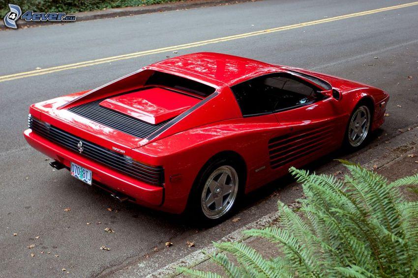 Ferrari TR, camino