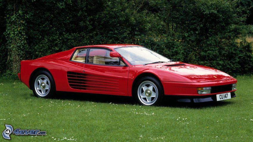 Ferrari TR, césped