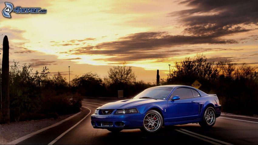 Ford Mustang, camino, puesta del sol