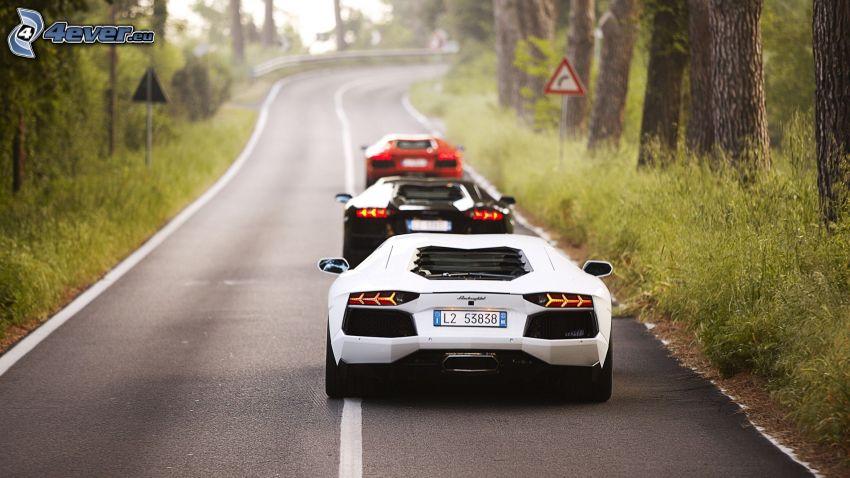 Lamborghini Aventador, camino, curva