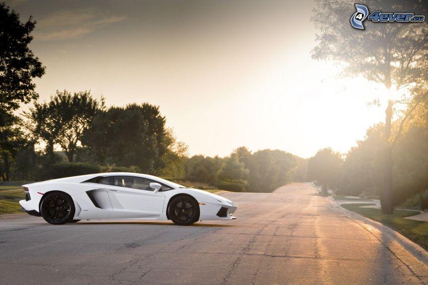 Lamborghini Aventador LP700, camino, puesta del sol, árboles