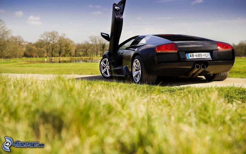Lamborghini Murciélago, césped