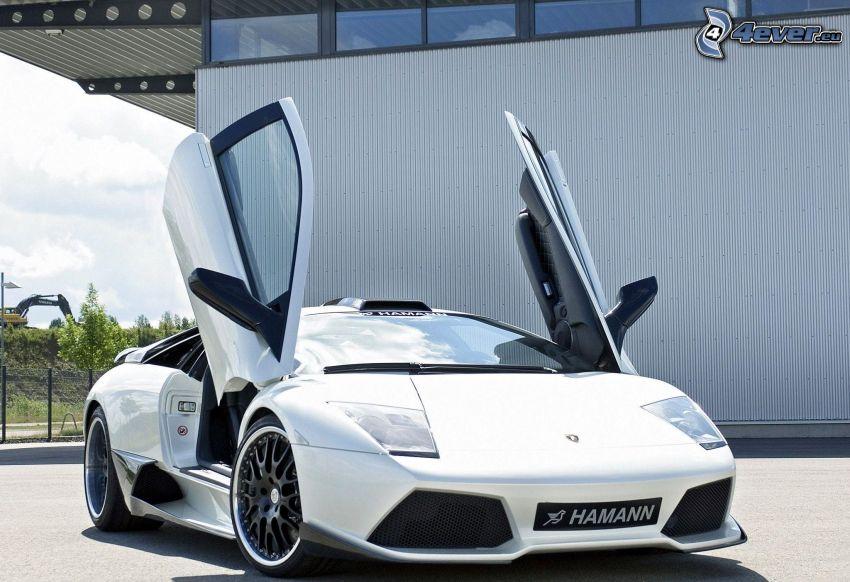 Lamborghini Murciélago, Hamann, puerta