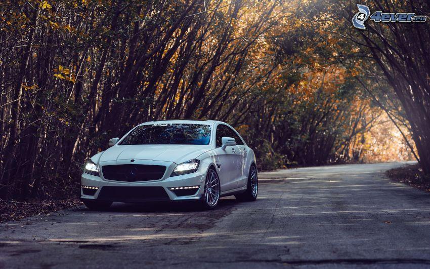 Mercedes-Benz, camino, árboles