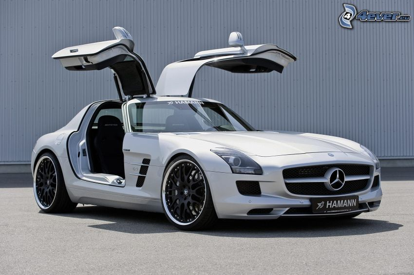 Mercedes SLS AMG GT3, puerta