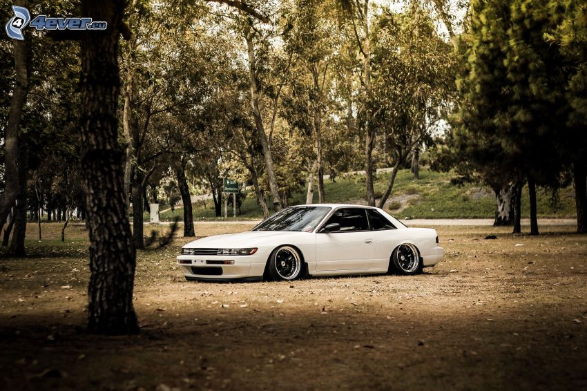 Nissan 240SX, lowrider, bosque