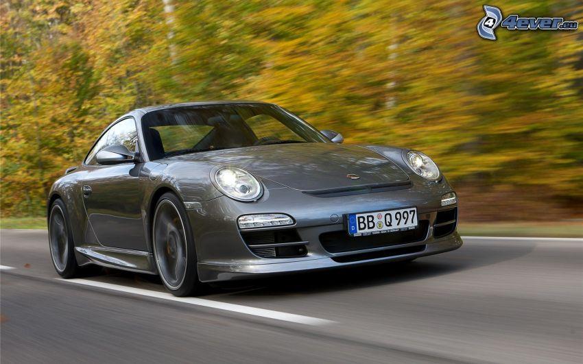 Porsche 911, camino, acelerar, paisaje de otoño