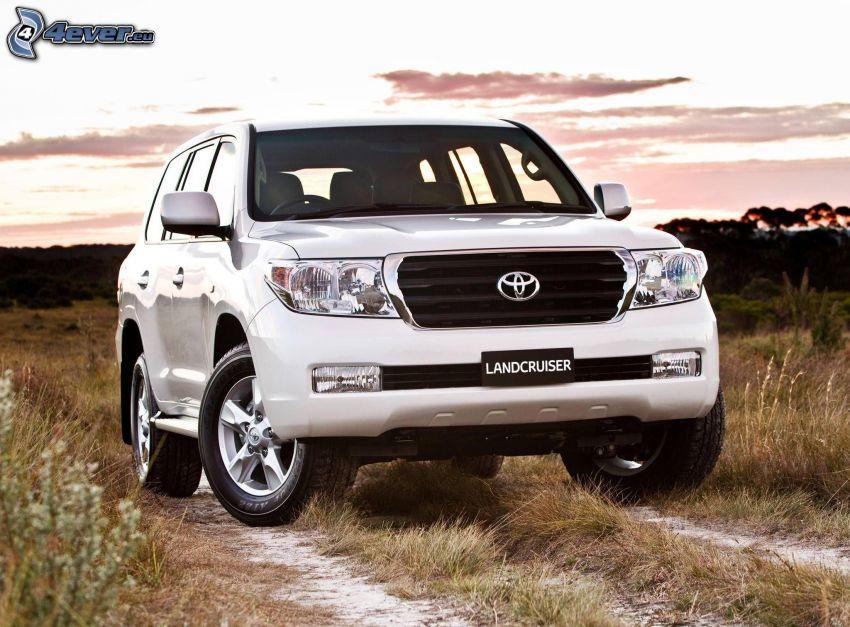 Toyota Land Cruiser, SUV, camino de campo