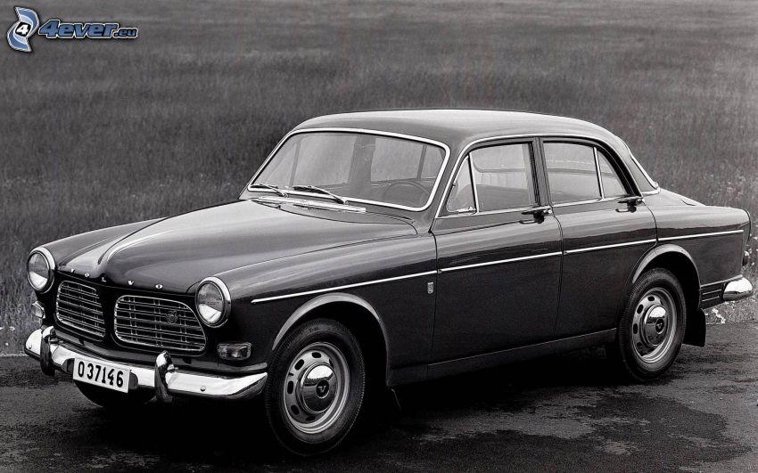 Volvo, veterano, blanco y negro