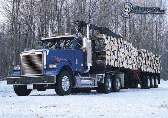 camión, invierno