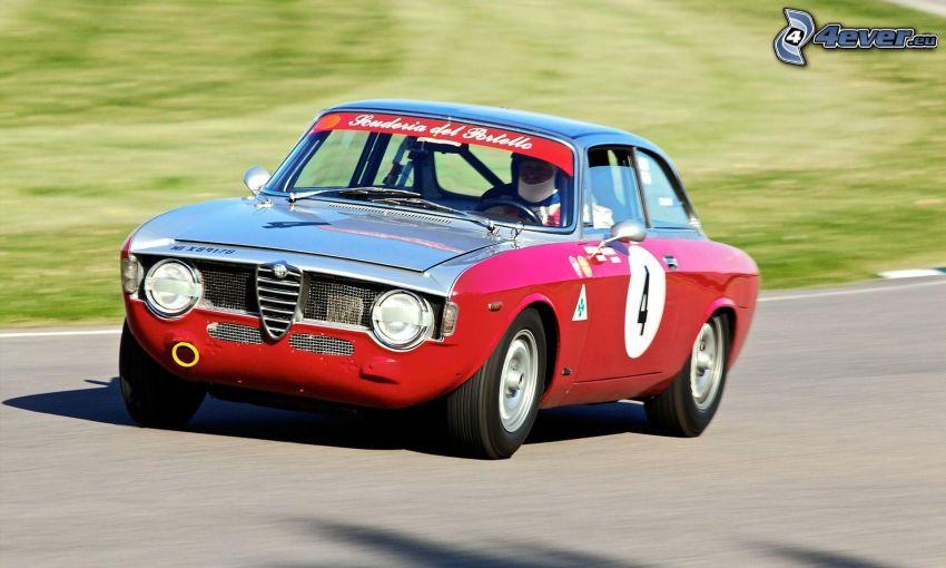 Alfa Romeo, veterano, coche de carreras, acelerar