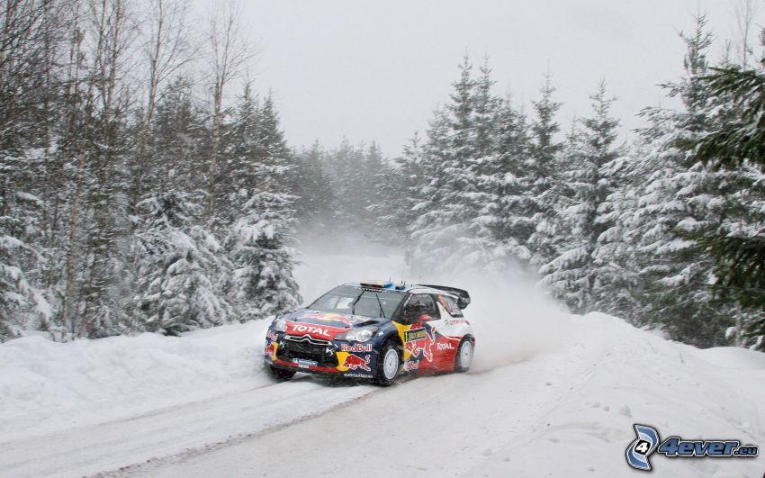 Citroën DS3, coche de carreras, bosque de coníferas nevado