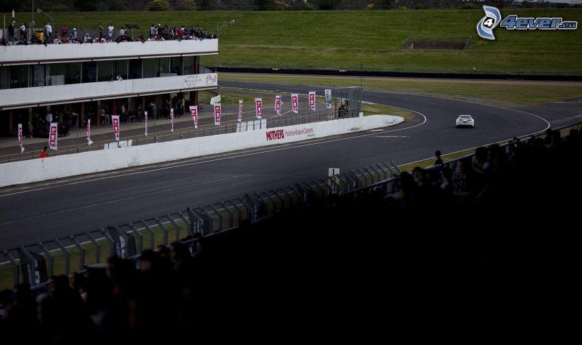 coche, carreras, carreras en circuito, audiencia