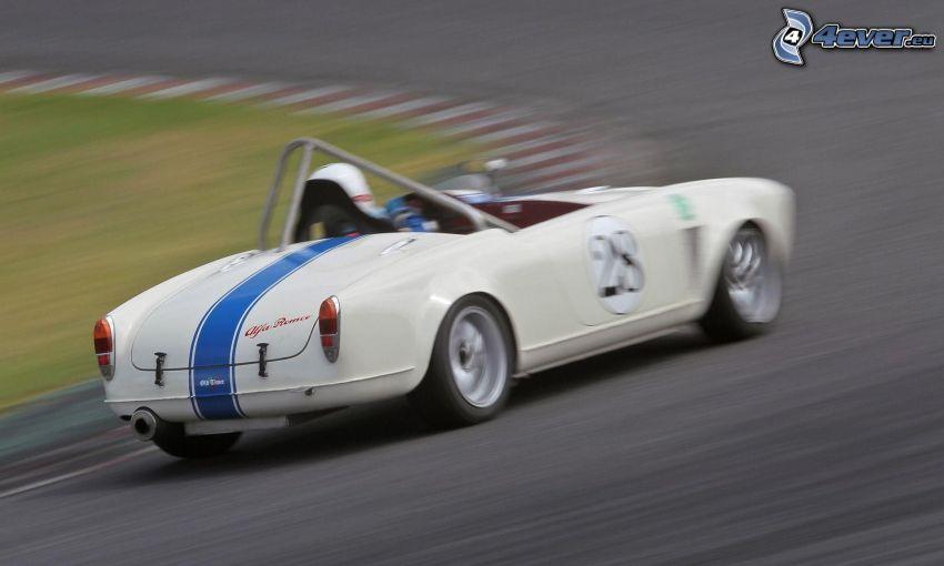coche de carreras, veterano, acelerar, carreras en circuito