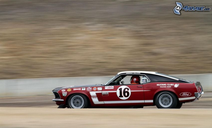Ford Mustang Boss 302, veterano