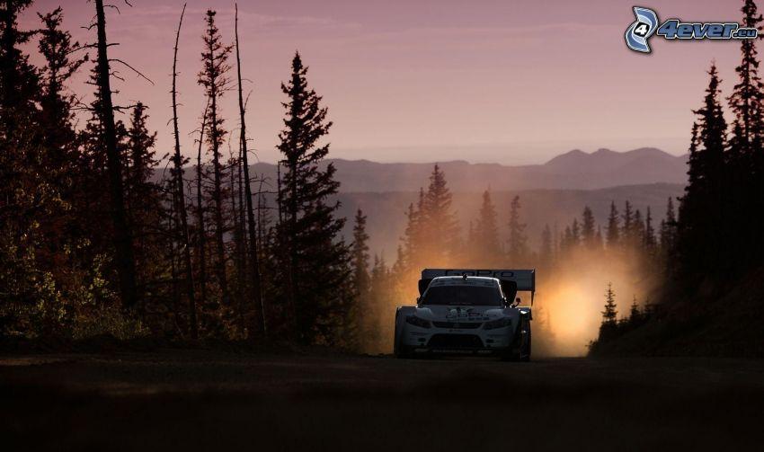 Suzuki, coche de carreras, árboles, polvo