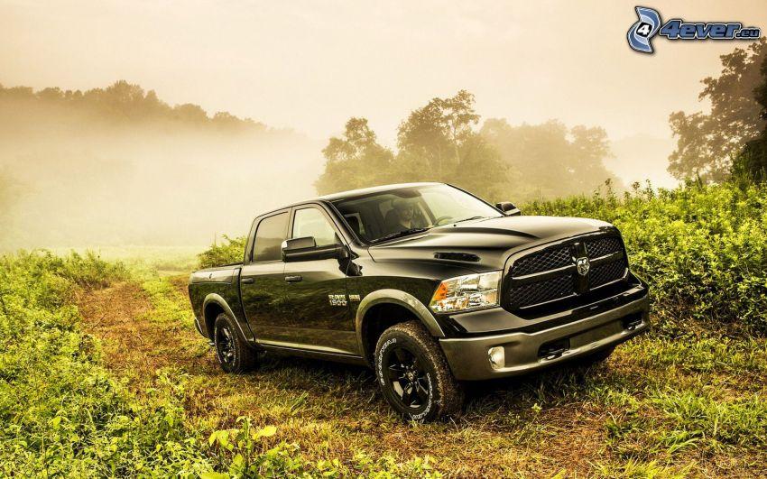Dodge ram, pickup truck