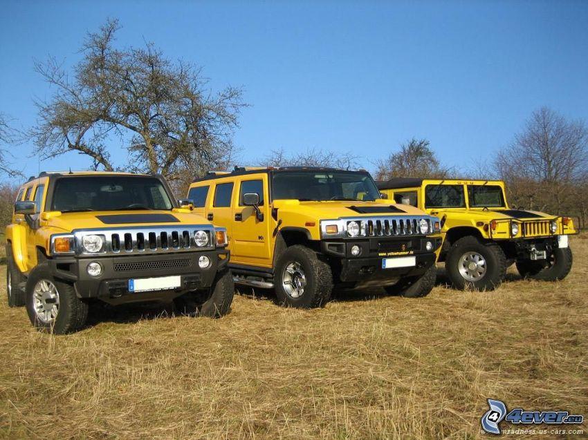 Hummer, Hummer H3, Hummer H2, Hummer H1