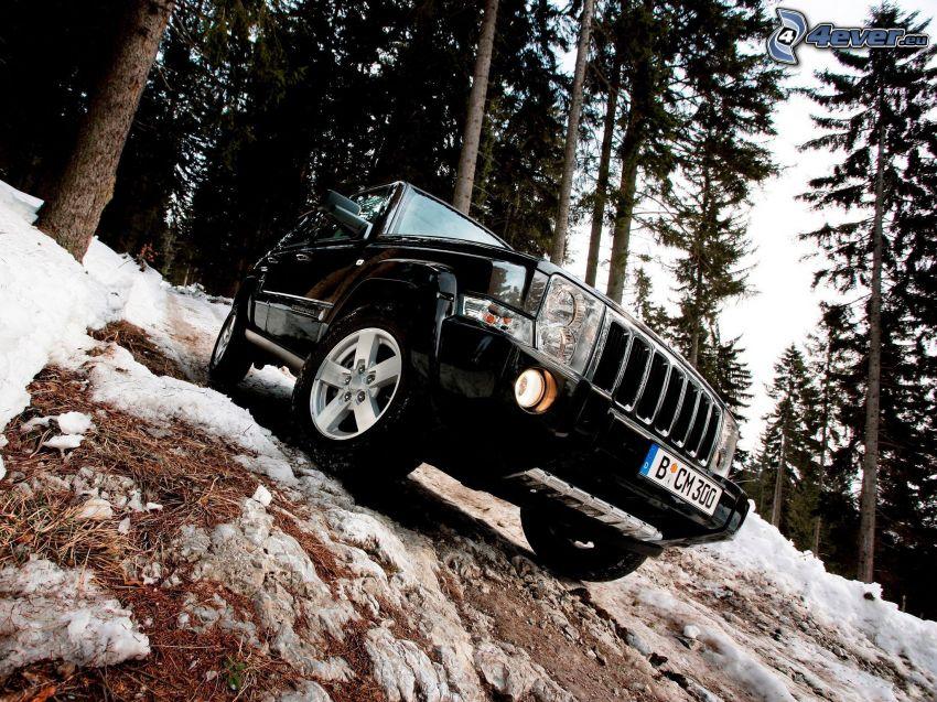 Jeep Comander, terreno, bosque de coníferas nevado