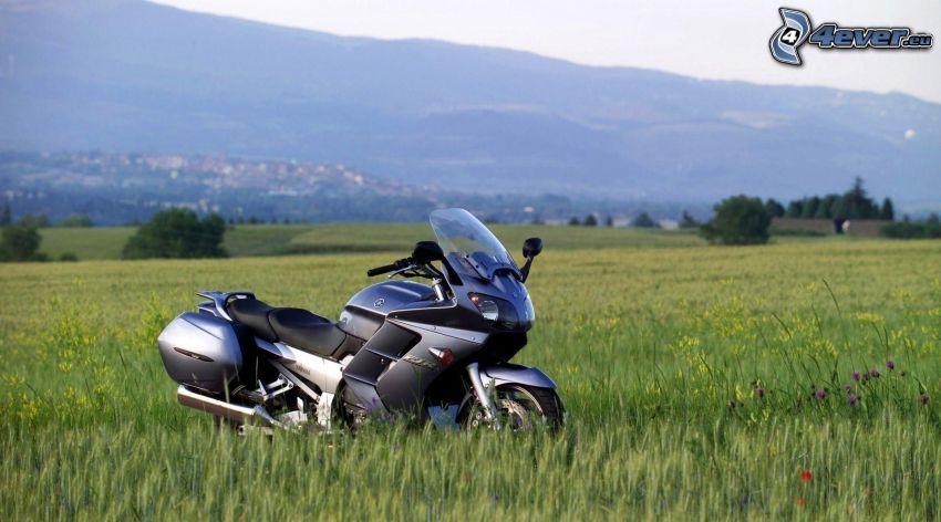 Yamaha, prado