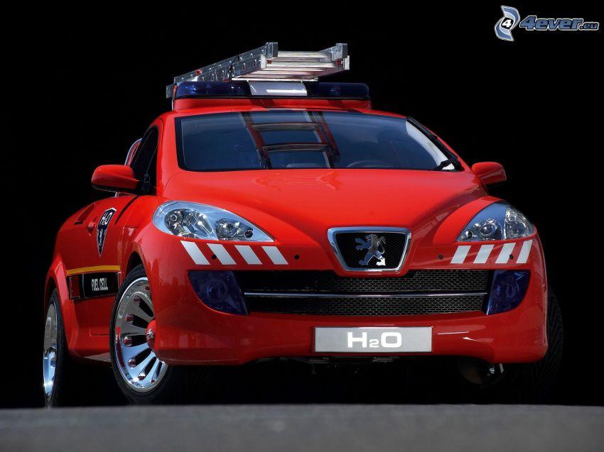 Peugeot H2O, concepto