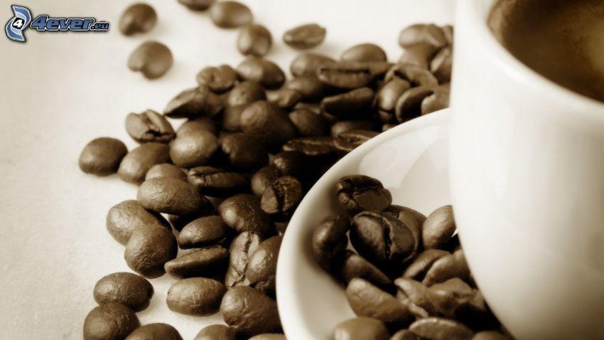 café, granos de café