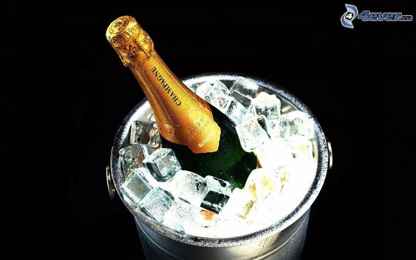 champán, hielo, cubo