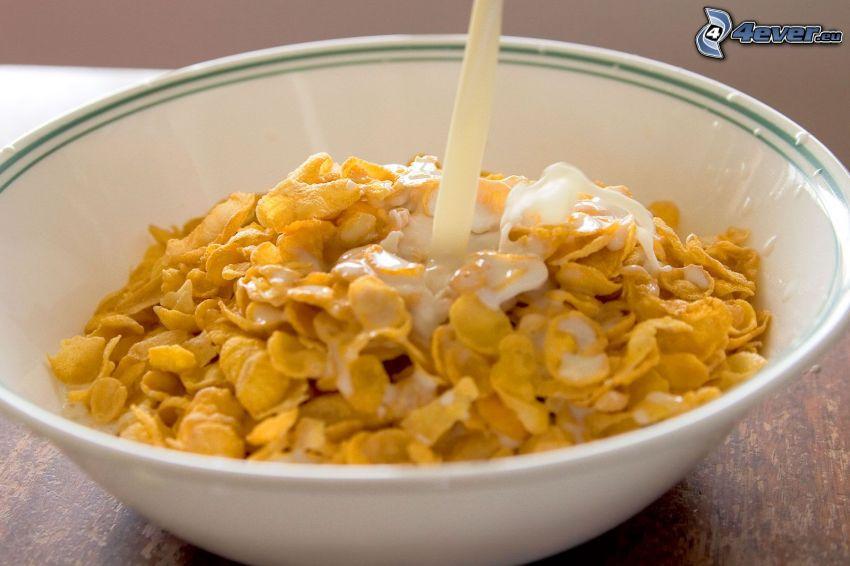 copos de maíz, leche, tazón, desayuno