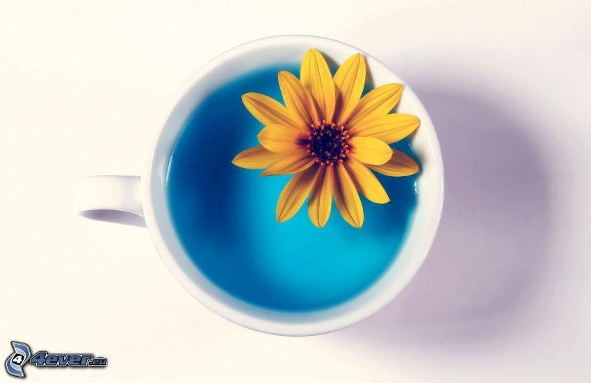 flor amarilla, taza, agua