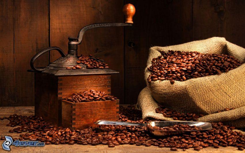 granos de café, amoladora