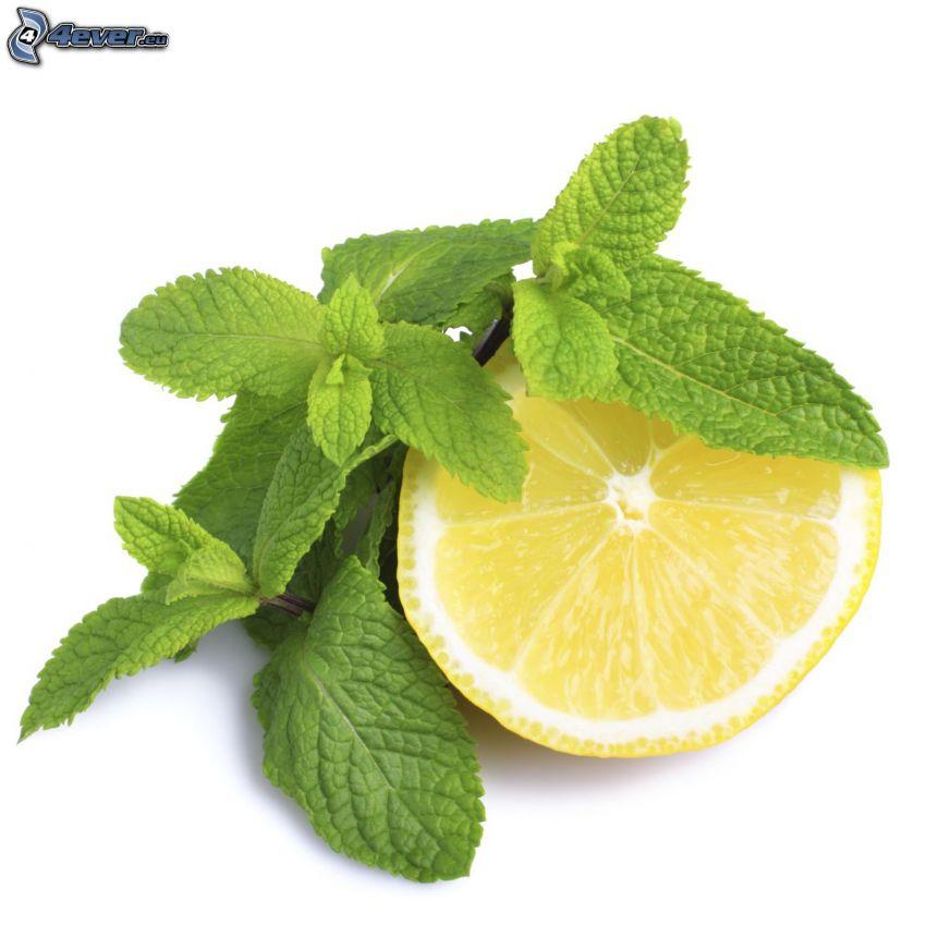 hojas de menta, rodaja de limón