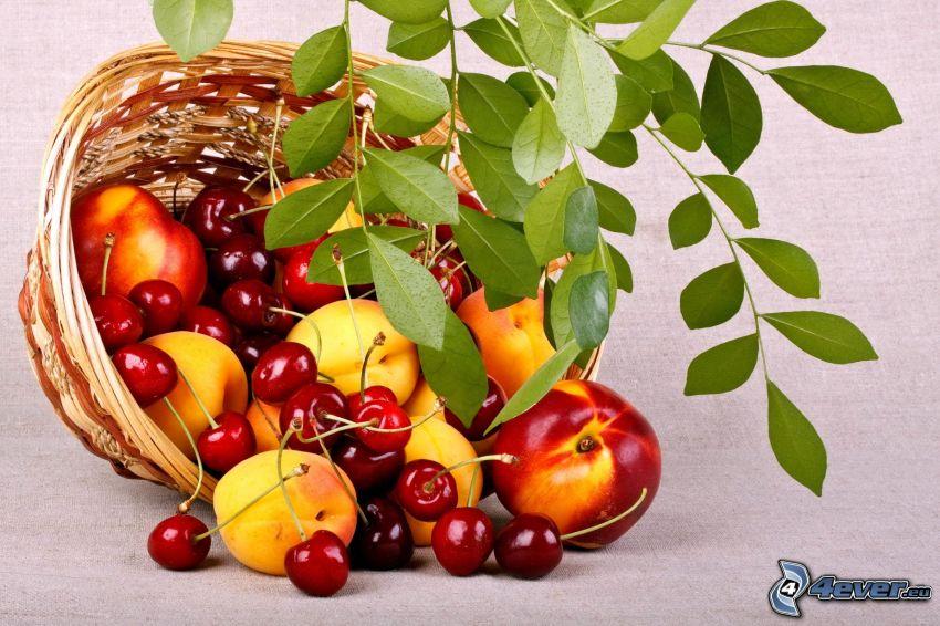 nectarinas, melocotones, cerezas, cesta, hojas verdes