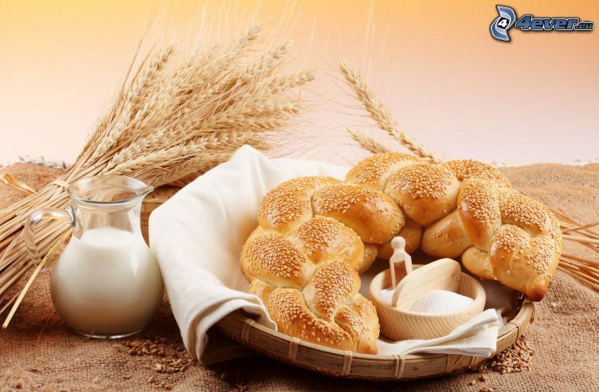 pan, trigo, leche