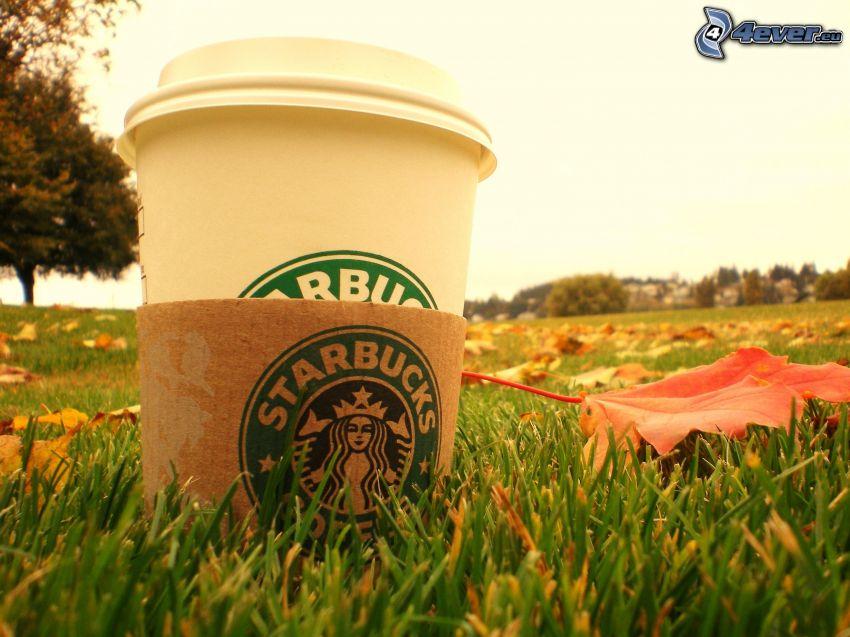 Starbucks, café, césped