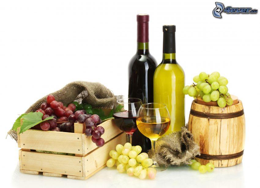 vino, uvas, cajas