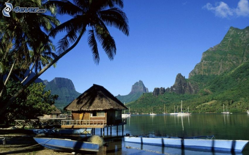 cabaña, islas de Moorea, Tahiti, sierra
