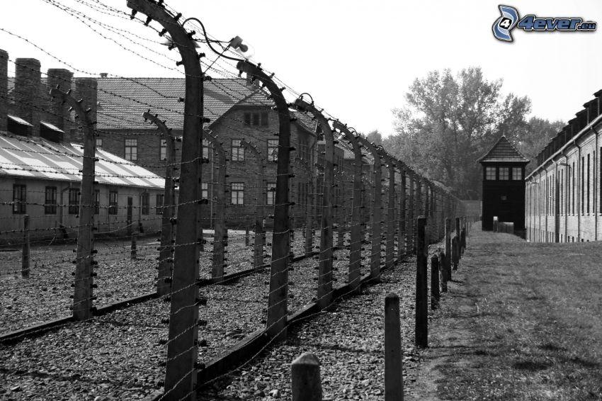 campo de concentración, alambre de la cerca, Oświęcim, Foto en blanco y negro