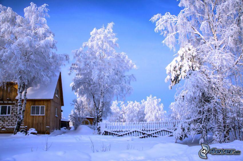 casa de campo cubierto de nieve, árboles nevados