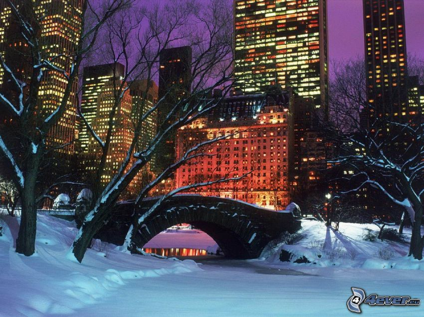 Central Park, puente de piedra, nieve, rascacielos, atardecer