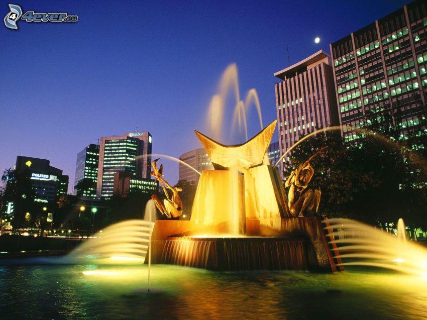 Adelaide, fuente, ciudad de noche