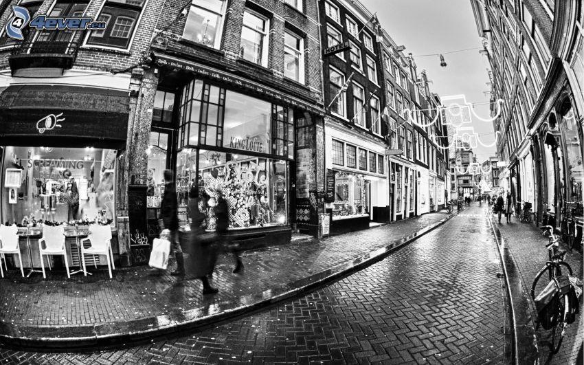 calle, Amsterdam, blanco y negro