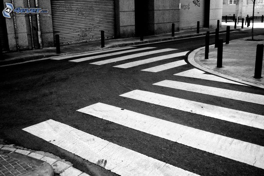 camino, paso peatonal, Foto en blanco y negro