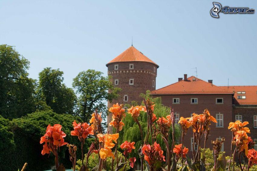 Castillo de Wawel, Cracovia, flores de color naranja
